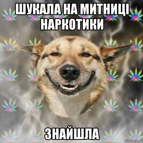 наркотрафік по-українськи
